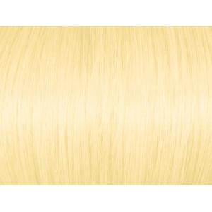 Highlight Intense Golden Blonde 100.3