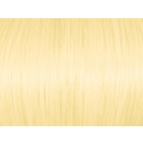 Highlight Intense Golden Blonde 100.3