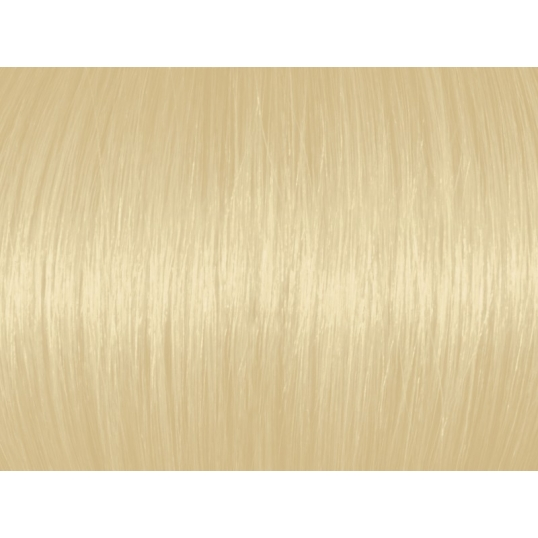Extra Light Natural Blonde 10N/10