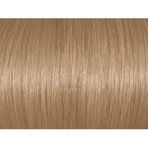 Light Natural Blonde 8N/8