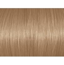 Light Natural Blonde 8N/8