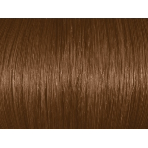 Dark Natural Blonde 6N/6