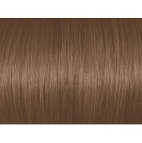 Dark Ash Blonde 6A/6.1