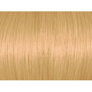 Light Golden Blonde 8G/8.3