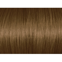 Dark Golden Blonde 6G/6.3