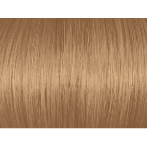 Light Beige Blonde 8GA/8.31