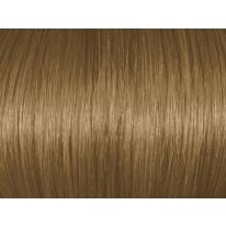 Chestnut Blonde 7Br/7.7