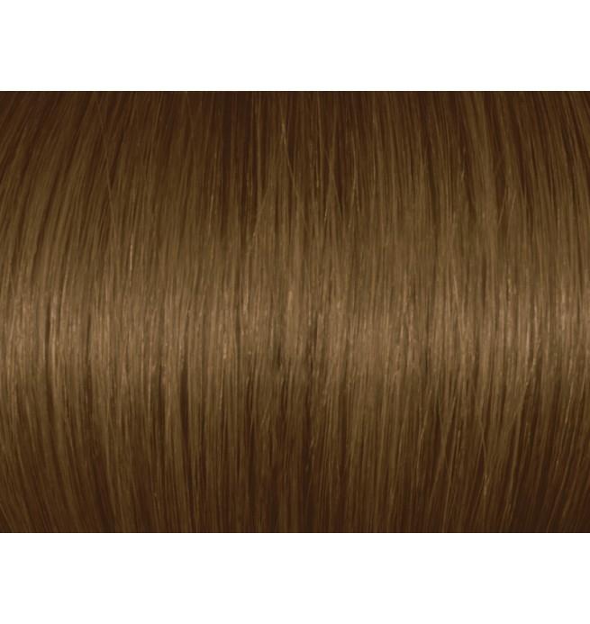 Chestnut Blonde 6br67