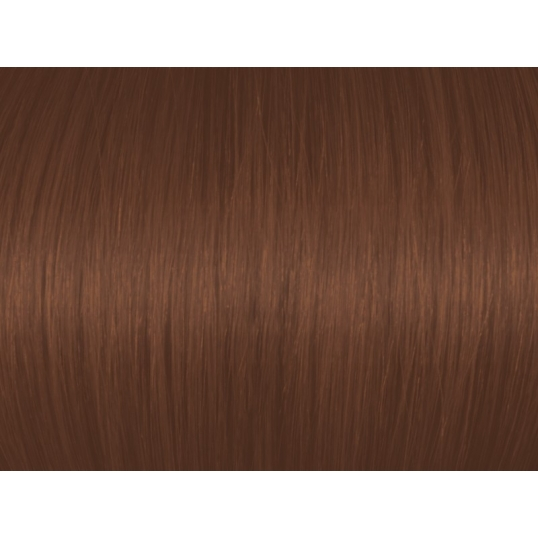 Dark Mocha Golden Blonde 6BrG/6.73