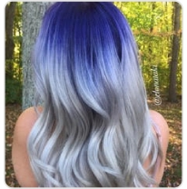 Blue Silver Shadow Root