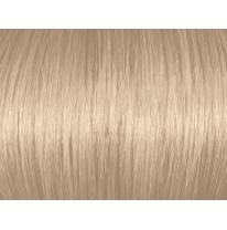 Natural Ash Blonde 010A