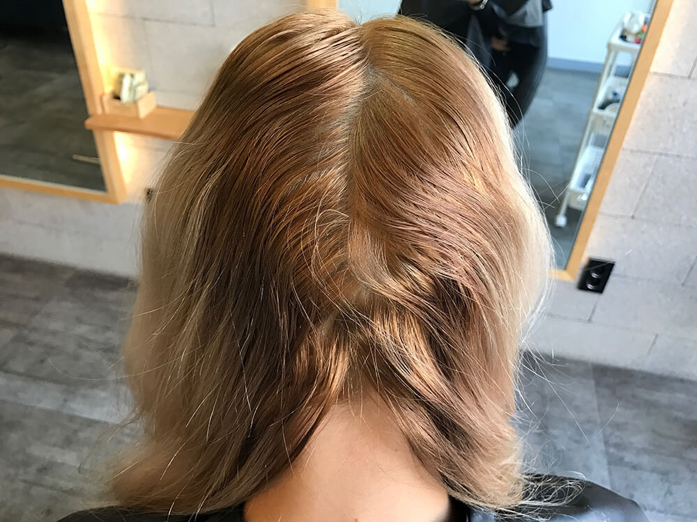 Regrowth Brassier than the Ends
