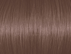 Dark Cold Ash Blonde 6.1b