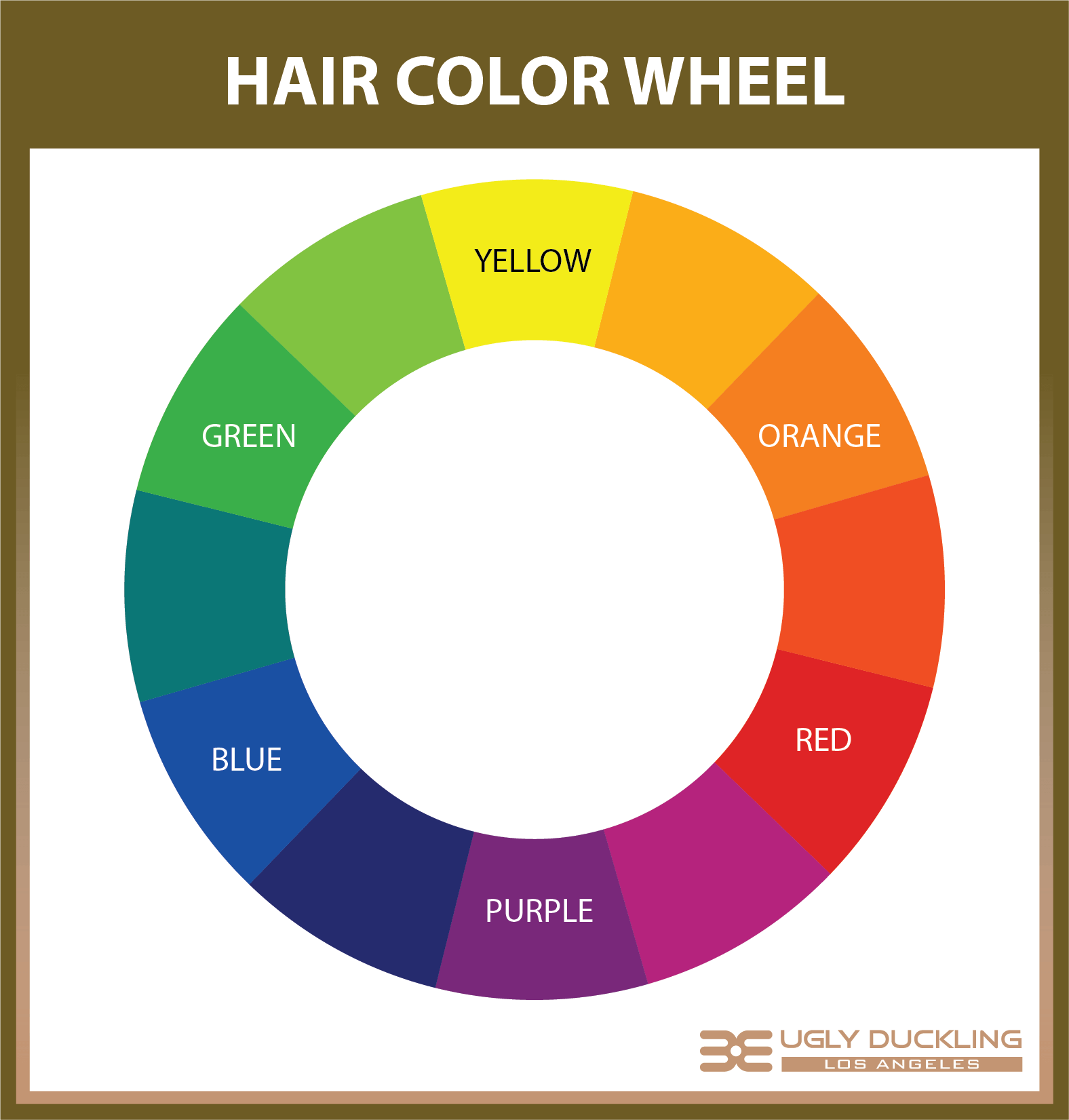 The Hair Color Wheel The Secrets To Color Neutralization And Tone Correction That All Hair Stylists Need To Know Ugly Duckling