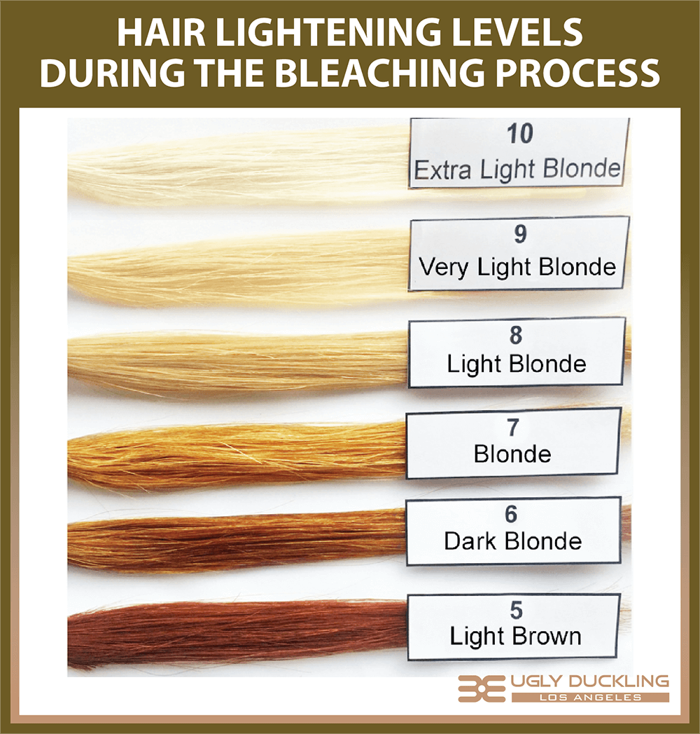Hair Color Bleaching Levels