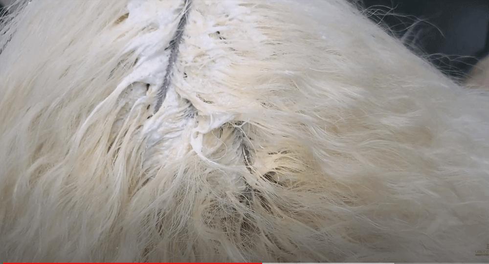Rince Bleach When Done
