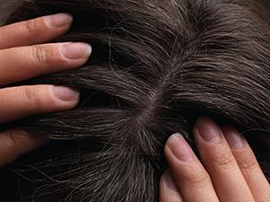 40% Grey Hair