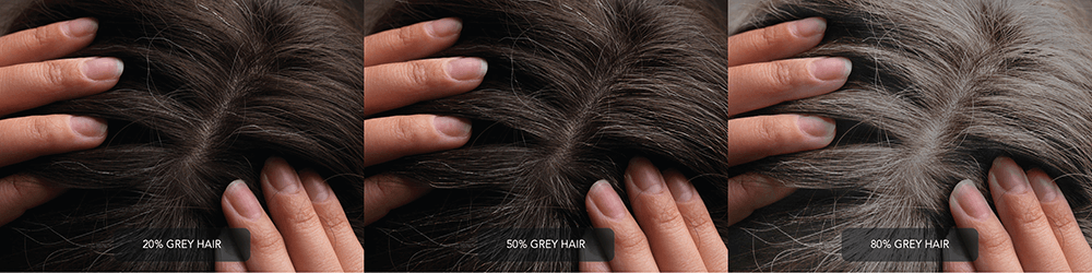 Percentage of Grey Hair