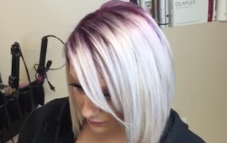 Violet and Silver Blended Root